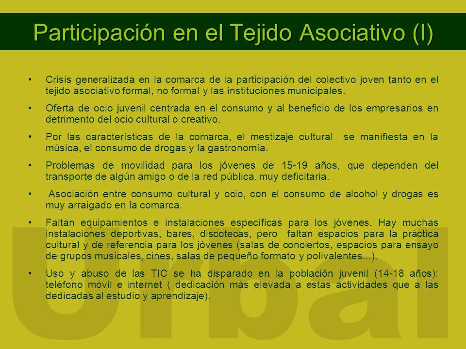 Participación en el Tejido Asociativo (I) Crisis generalizada en la comarca de la participación del colectivo joven tanto en el tejido asociativo formal, no formal y las instituciones municipales.