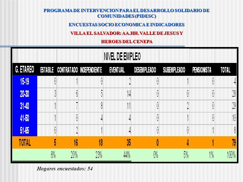 PROGRAMA DE INTERVENCION PARA EL DESARROLLO SOLIDARIO DE COMUNIDADES (PIDESC) ENCUESTAS SOCIO ECONOMICA E INDICADORES VILLA EL SALVADOR: AA.HH. VALLE