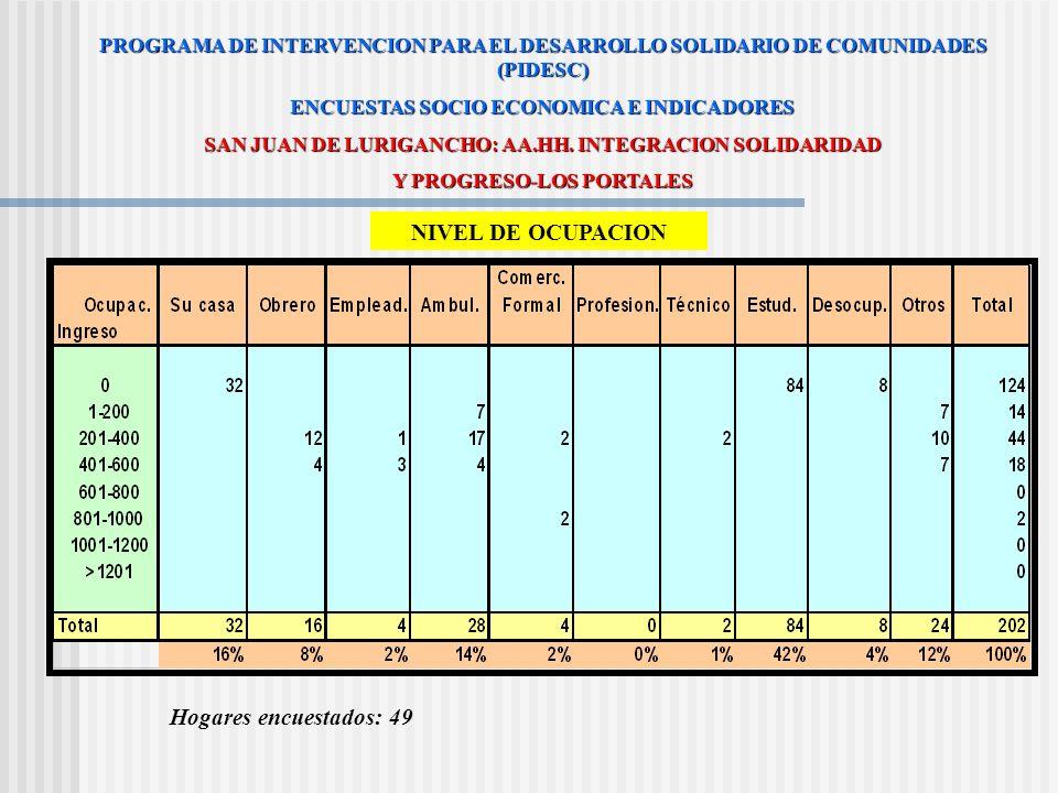 NIVEL DE EMPLEO PROGRAMA DE INTERVENCION PARA EL DESARROLLO SOLIDARIO DE COMUNIDADES (PIDESC) ENCUESTAS SOCIO ECONOMICA E INDICADORES SAN JUAN DE LURI