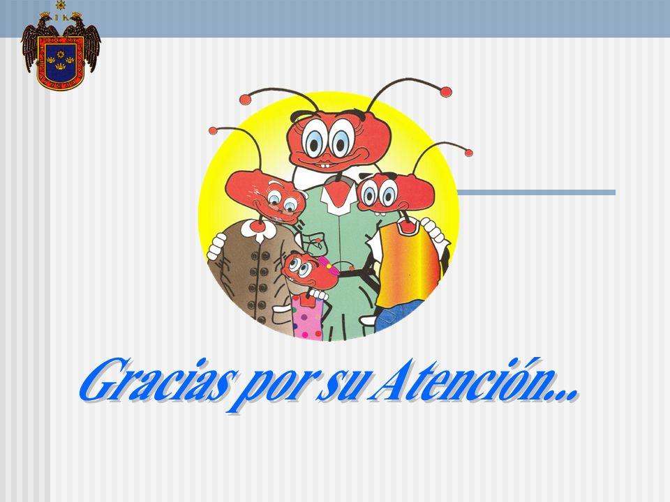 LOCAL COMUNAL AA.HH VALLE DE JESUS VILLA EL SALVADOR ANTESDESPUES ANTESDESPUES