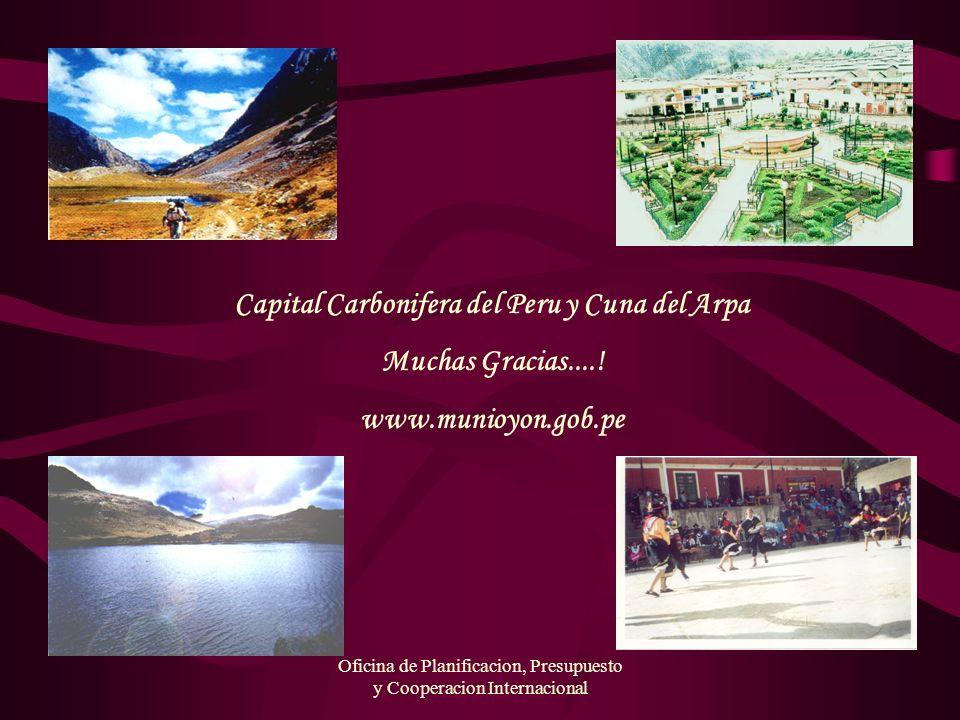 Oficina de Planificacion, Presupuesto y Cooperacion Internacional Capital Carbonifera del Peru y Cuna del Arpa Muchas Gracias....! www.munioyon.gob.pe