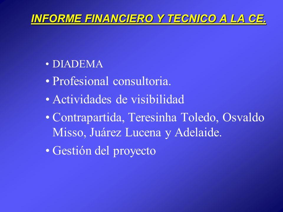 INFORME FINANCIERO Y TECNICO A LA CE. DIADEMA Profesional consultoria.