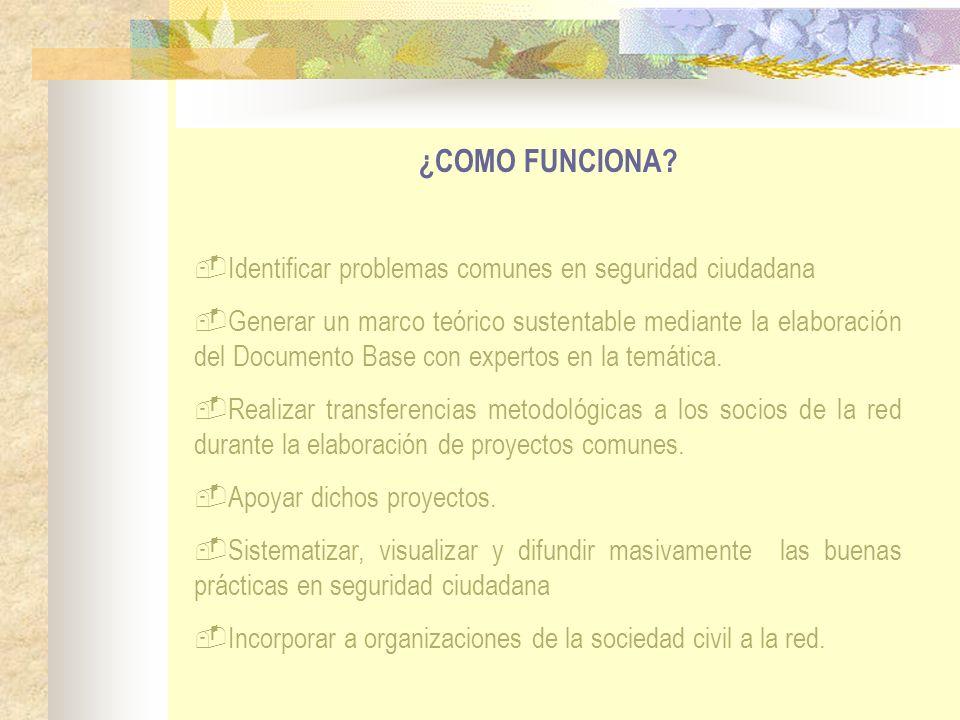 ¿COMO FUNCIONA? Identificar problemas comunes en seguridad ciudadana Generar un marco teórico sustentable mediante la elaboración del Documento Base c