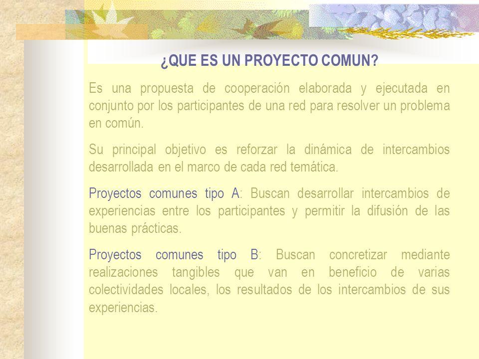 ¿QUE ES UN PROYECTO COMUN? Es una propuesta de cooperación elaborada y ejecutada en conjunto por los participantes de una red para resolver un problem