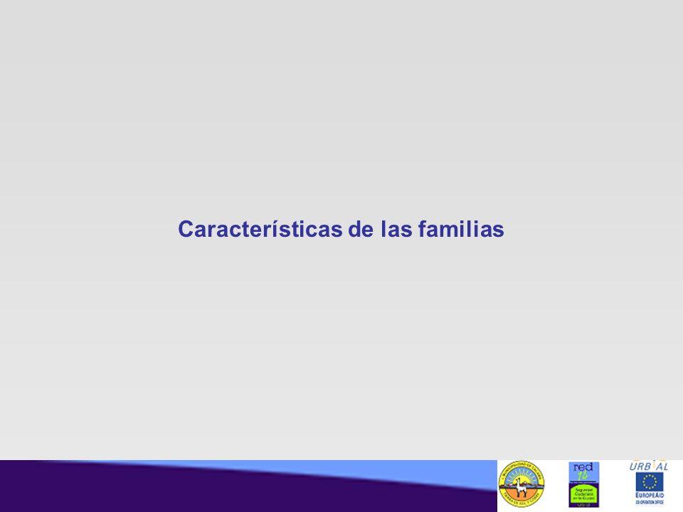 Características de las familias