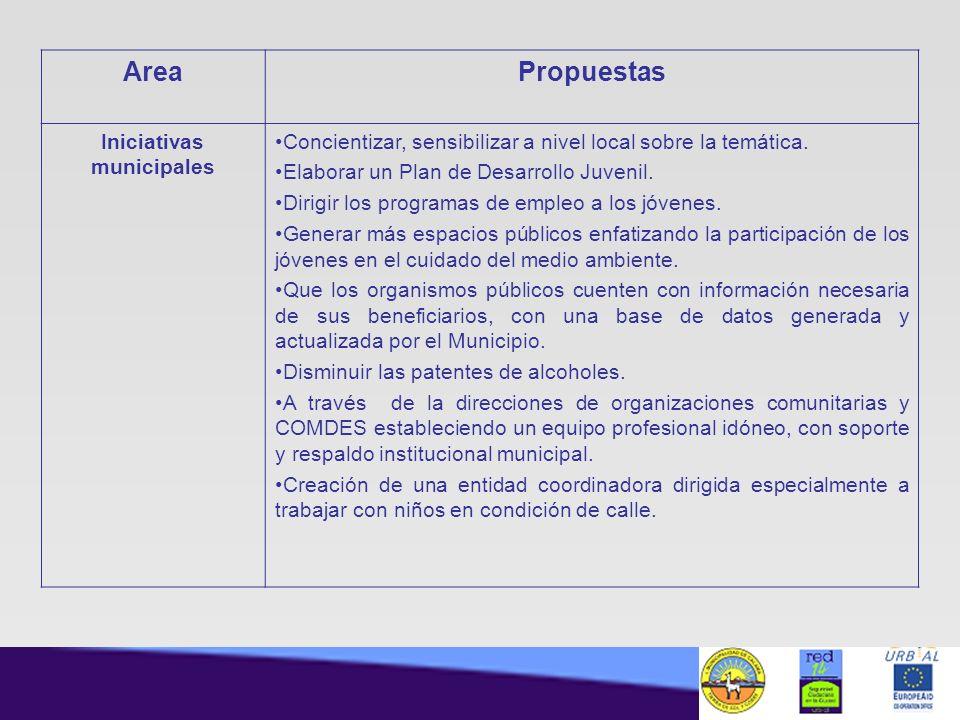 AreaPropuestas Iniciativas municipales Concientizar, sensibilizar a nivel local sobre la temática. Elaborar un Plan de Desarrollo Juvenil. Dirigir los