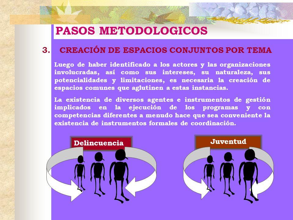 PASOS METODOLOGICOS 3. CREACIÓN DE ESPACIOS CONJUNTOS POR TEMA Luego de haber identificado a los actores y las organizaciones involucradas, así como s