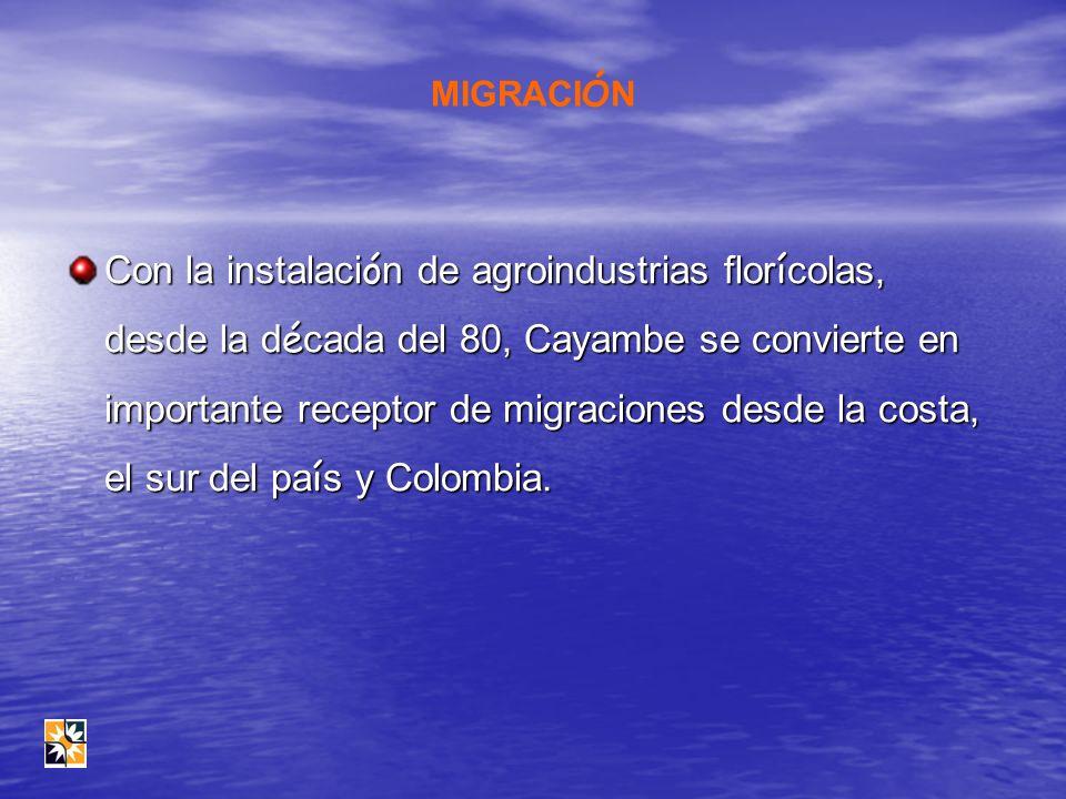 MIGRACI Ó N Con la instalaci ó n de agroindustrias flor í colas, desde la d é cada del 80, Cayambe se convierte en importante receptor de migraciones
