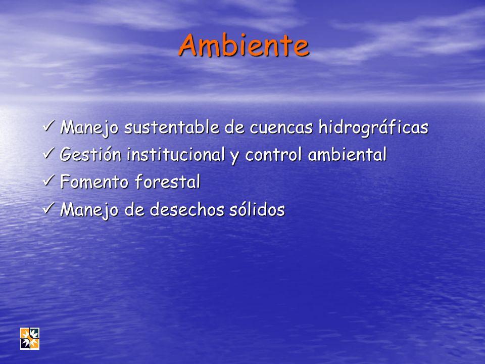 Ambiente Manejo sustentable de cuencas hidrográficas Manejo sustentable de cuencas hidrográficas Gestión institucional y control ambiental Gestión ins