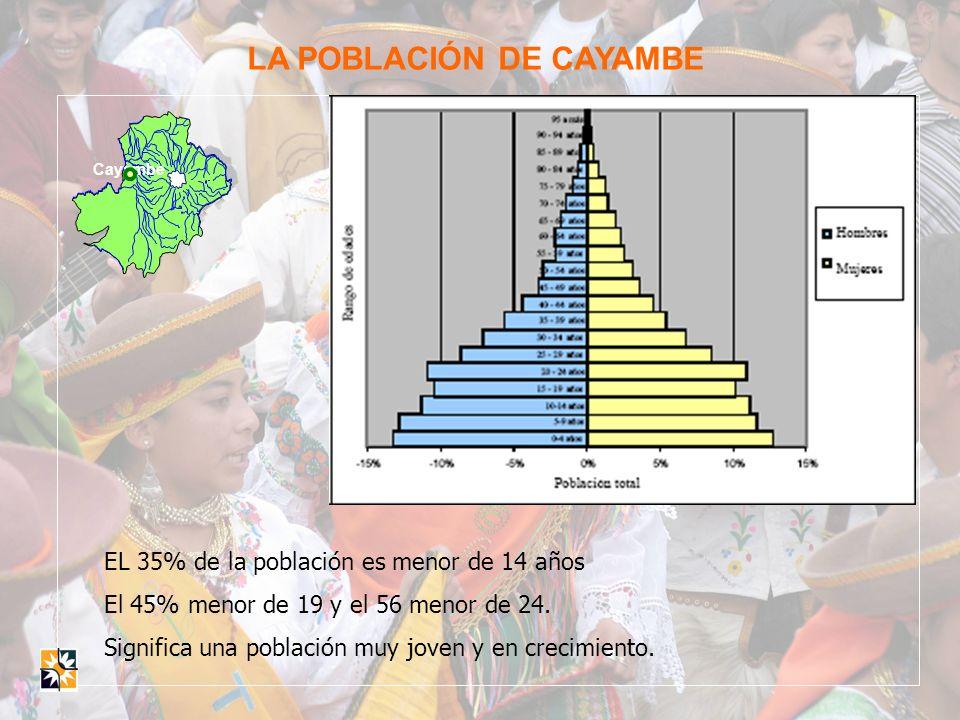 Cayambe LA POBLACIÓN DE CAYAMBE EL 35% de la población es menor de 14 años El 45% menor de 19 y el 56 menor de 24. Significa una población muy joven y