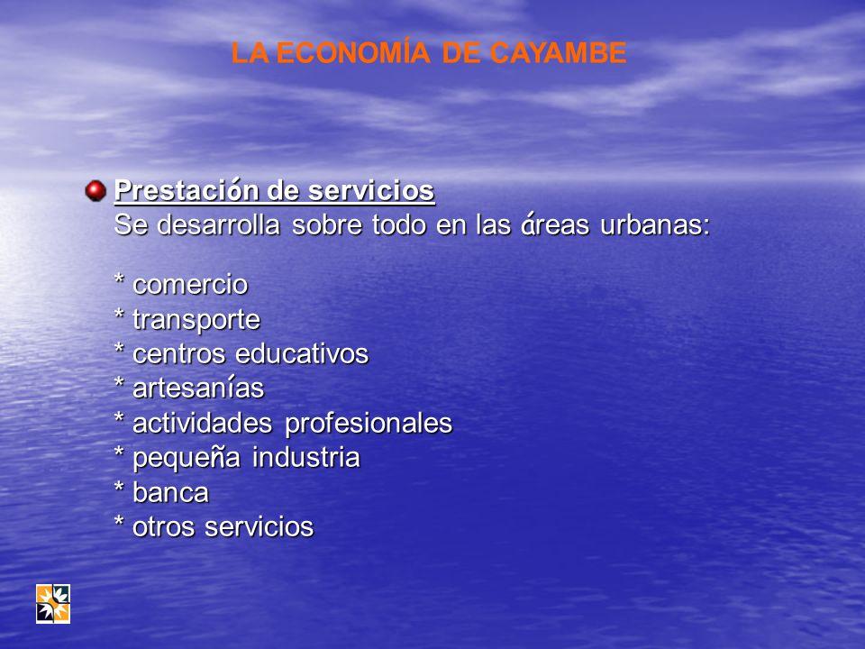 Prestaci ó n de servicios Se desarrolla sobre todo en las á reas urbanas: * comercio * transporte * centros educativos * artesan í as * actividades pr