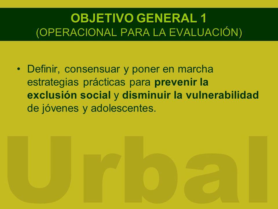 OBJETIVO GENERAL 1 (OPERACIONAL PARA LA EVALUACIÓN) Definir, consensuar y poner en marcha estrategias prácticas para prevenir la exclusión social y di