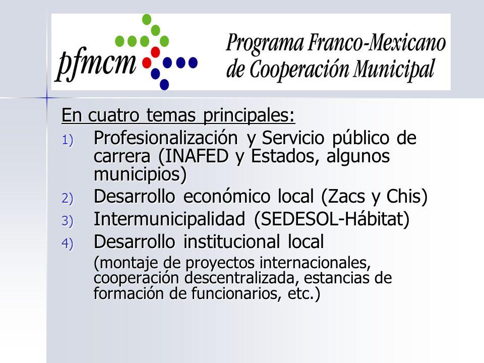 En cuatro temas principales: 1) Profesionalización y Servicio público de carrera (INAFED y Estados, algunos municipios) 2) Desarrollo económico local