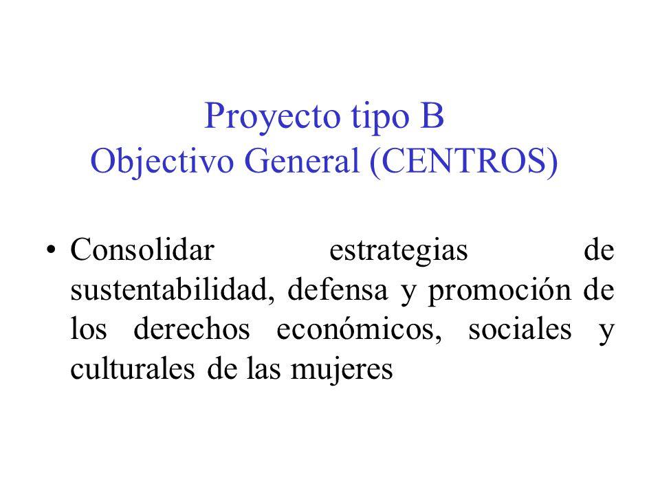 Proyecto tipo B Objectivo General (CENTROS) Consolidar estrategias de sustentabilidad, defensa y promoción de los derechos económicos, sociales y culturales de las mujeres