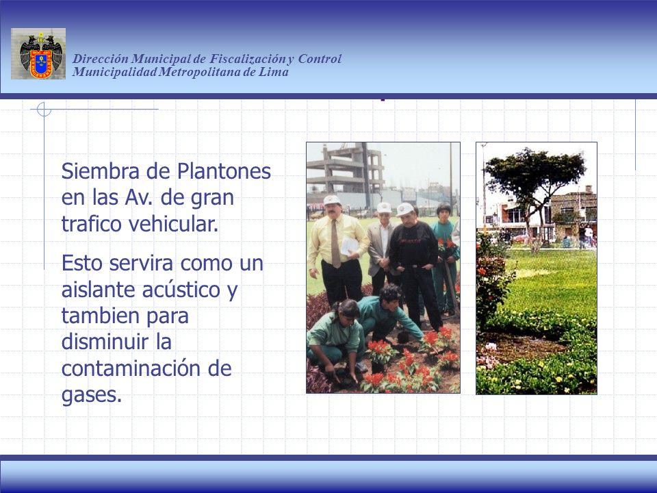 Haga clic para modificar el estilo de título del patrón Dirección Municipal de Fiscalización y Control Municipalidad Metropolitana de Lima 10 Siembra de Plantones en las Av.