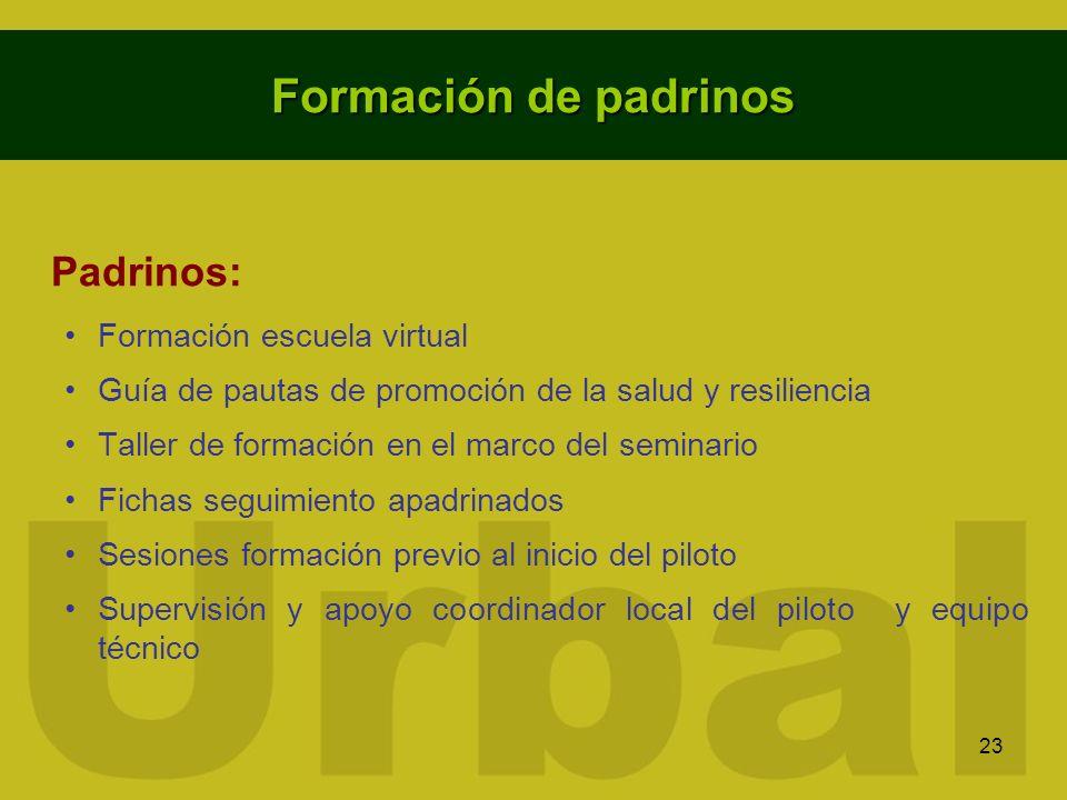 23 Formación de padrinos Padrinos: Formación escuela virtual Guía de pautas de promoción de la salud y resiliencia Taller de formación en el marco del