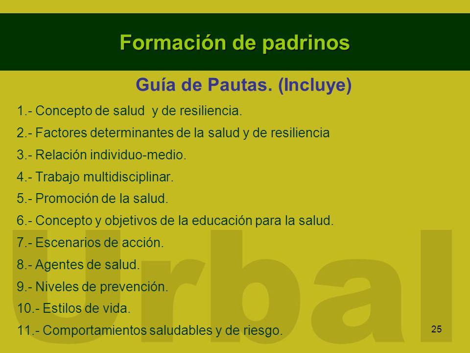 25 Formación de padrinos Guía de Pautas. (Incluye) 1.- Concepto de salud y de resiliencia. 2.- Factores determinantes de la salud y de resiliencia 3.-