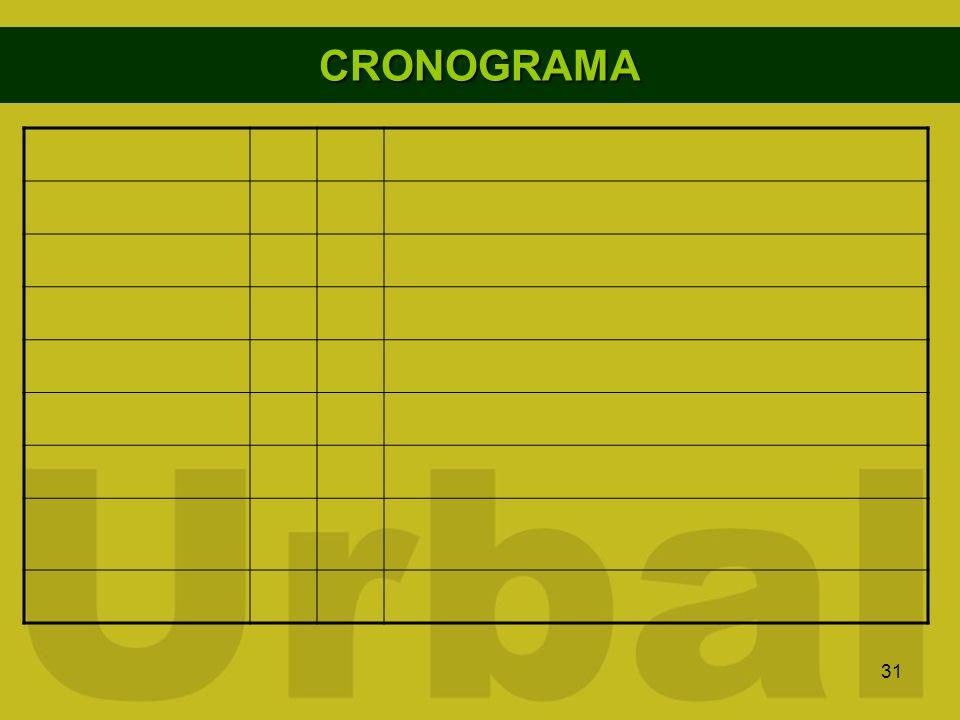 31 CRONOGRAMA