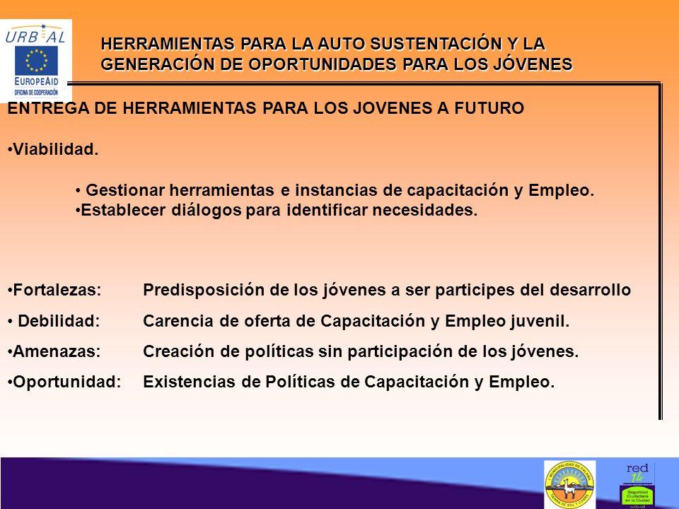 HERRAMIENTAS PARA LA AUTO SUSTENTACIÓN Y LA GENERACIÓN DE OPORTUNIDADES PARA LOS JÓVENES ENTREGA DE HERRAMIENTAS PARA LOS JOVENES A FUTURO Viabilidad.