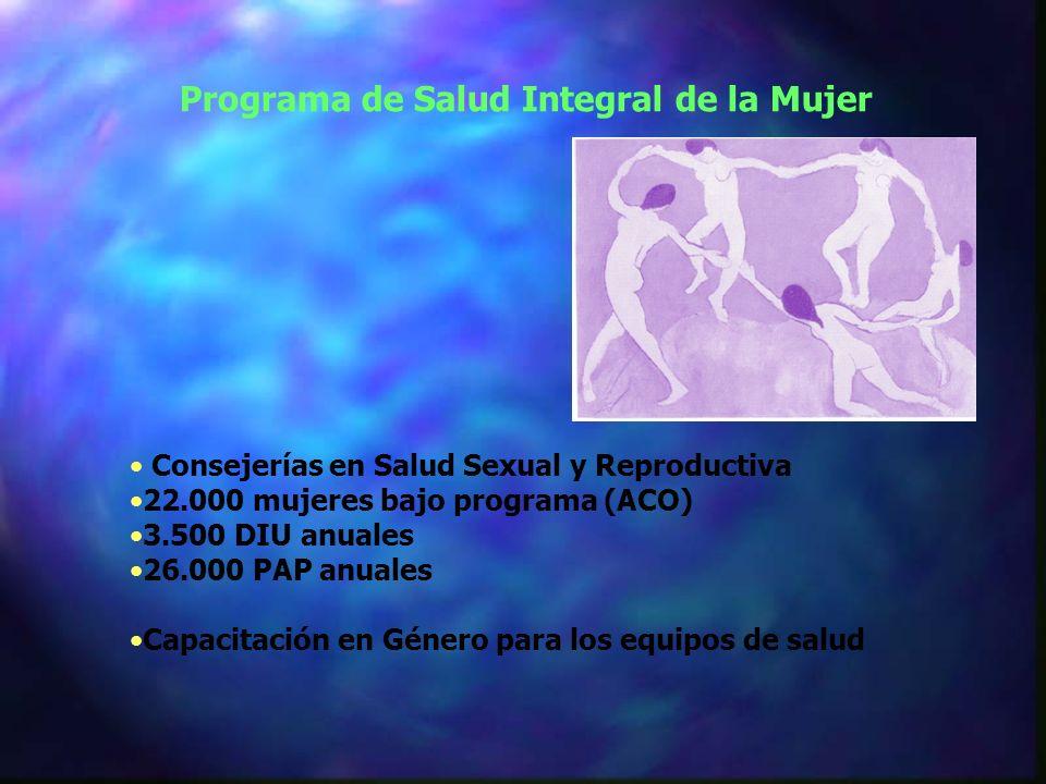 Consejerías en Salud Sexual y Reproductiva 22.000 mujeres bajo programa (ACO) 3.500 DIU anuales 26.000 PAP anuales Capacitación en Género para los equipos de salud Programa de Salud Integral de la Mujer
