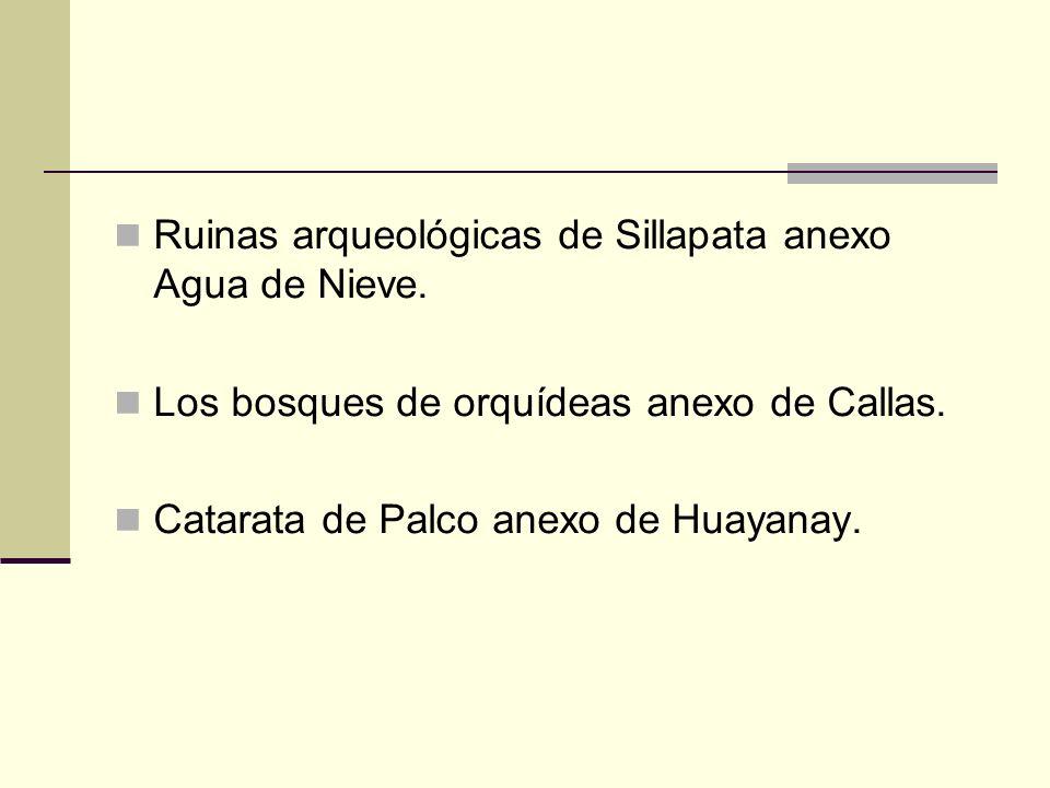 Ruinas arqueológicas de Sillapata anexo Agua de Nieve. Los bosques de orquídeas anexo de Callas. Catarata de Palco anexo de Huayanay.