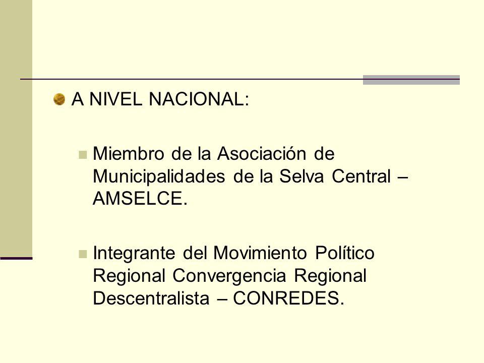 A NIVEL NACIONAL: Miembro de la Asociación de Municipalidades de la Selva Central – AMSELCE. Integrante del Movimiento Político Regional Convergencia