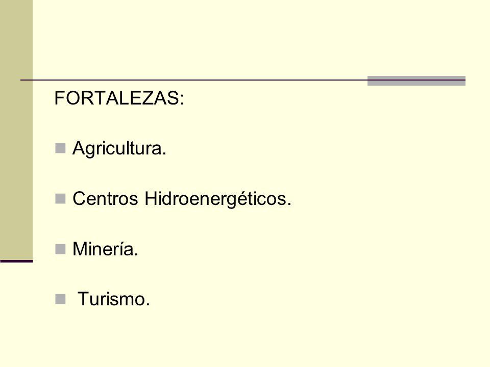 FORTALEZAS: Agricultura. Centros Hidroenergéticos. Minería. Turismo.