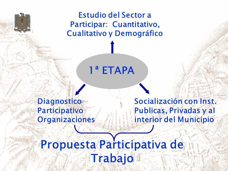 Diagnostico Participativo Organizaciones Estudio del Sector a Participar: Cuantitativo, Cualitativo y Demográfico Socialización con Inst. Publicas, Pr