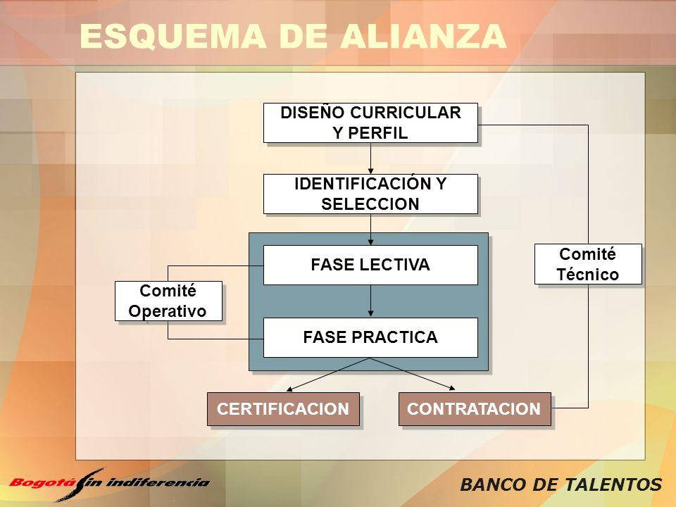 BANCO DE TALENTOS ESQUEMA DE ALIANZA CERTIFICACION CONTRATACION DISEÑO CURRICULAR Y PERFIL DISEÑO CURRICULAR Y PERFIL IDENTIFICACIÓN Y SELECCION IDENT