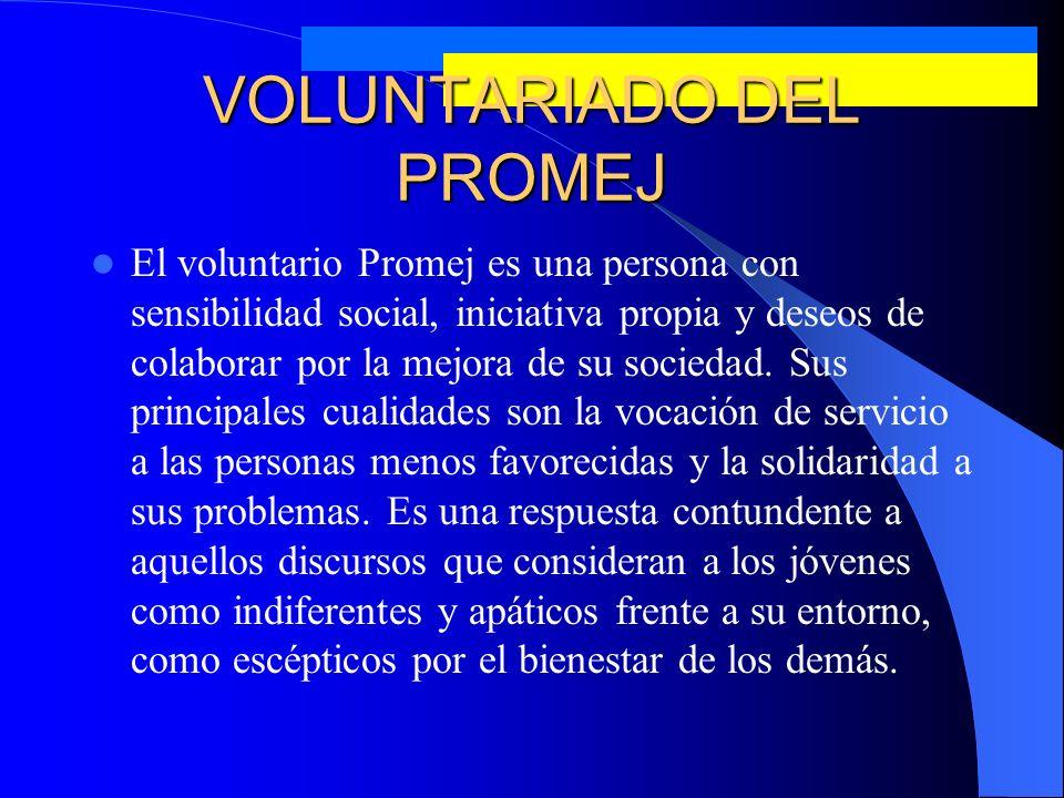 Niveles de Organización del Sistema de Voluntariado PROMEJ Voluntarios Promej de Campaña.