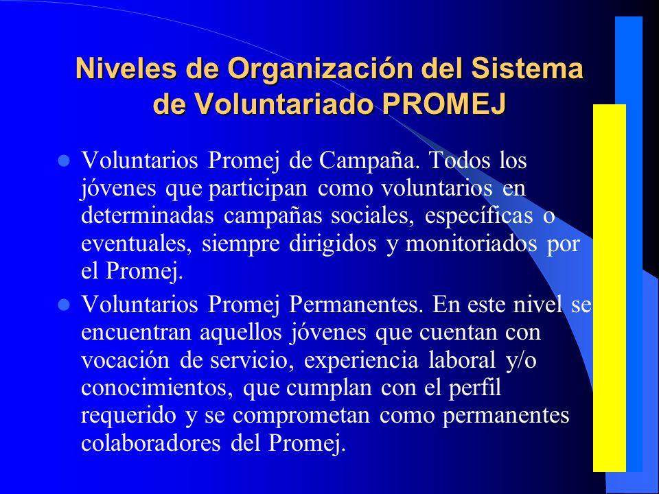 El Voluntariado y la Conciencia Ciudadana para construir Democracia en Lima El voluntariado realiza constantemente talleres de analisis de la realidad nacional, y debate temas de educcación, salud y trabajo.