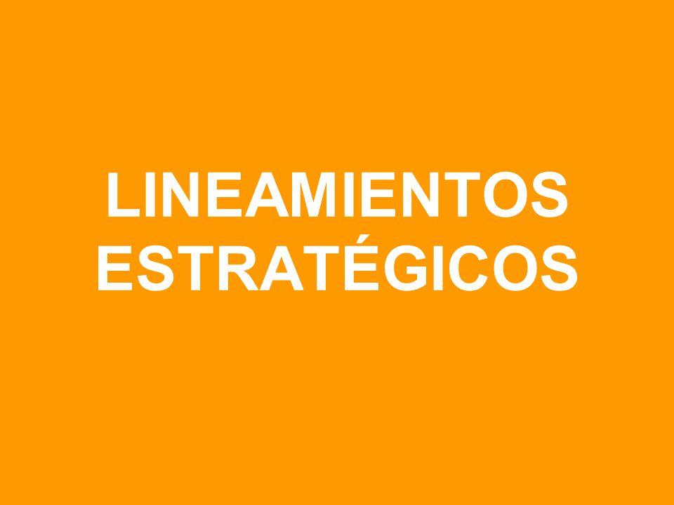 LINEAMIENTOS ESTRATÉGICOS