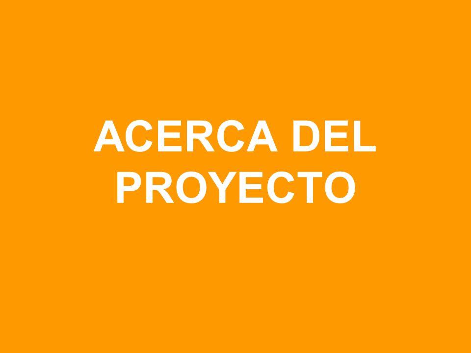 ACERCA DEL PROYECTO
