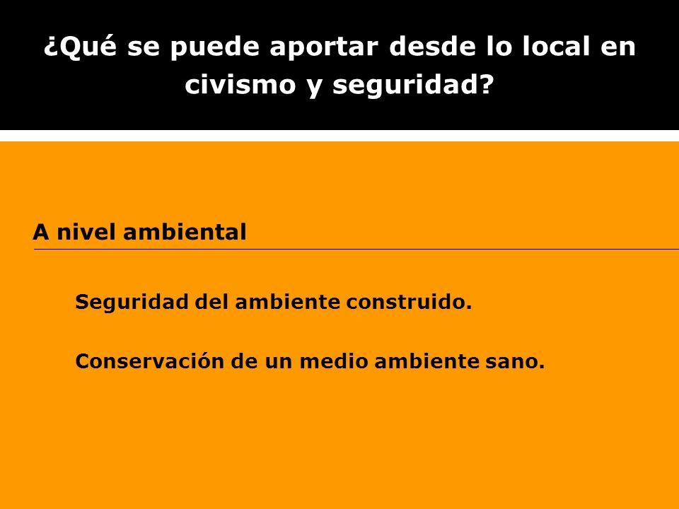 ¿Qué se puede aportar desde lo local en civismo y seguridad? A nivel ambiental Seguridad del ambiente construido. Conservación de un medio ambiente sa