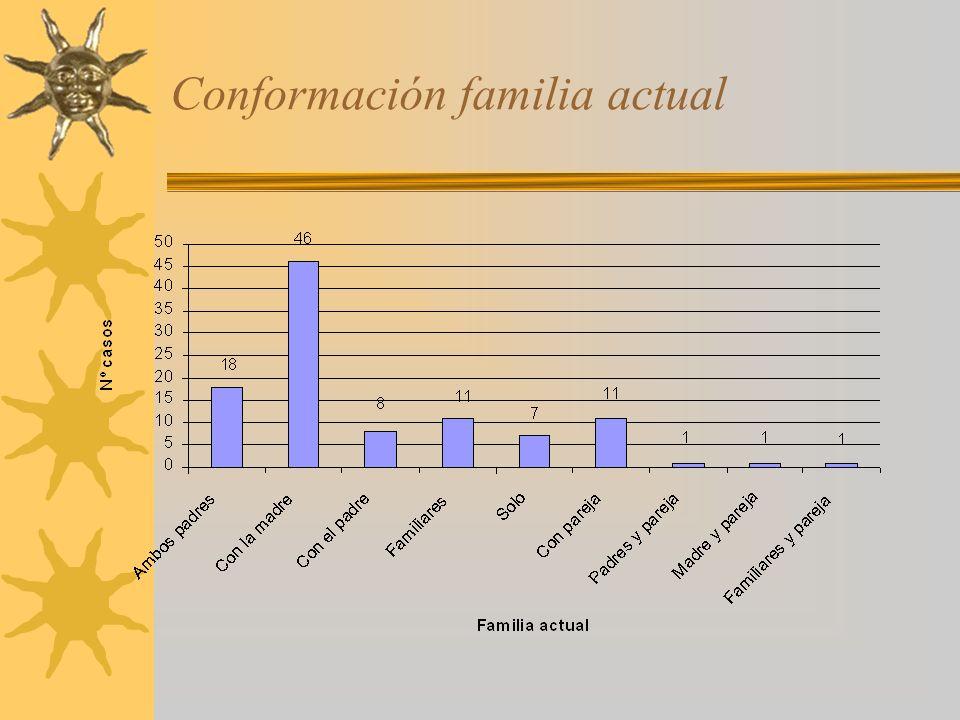 Conformación familia actual