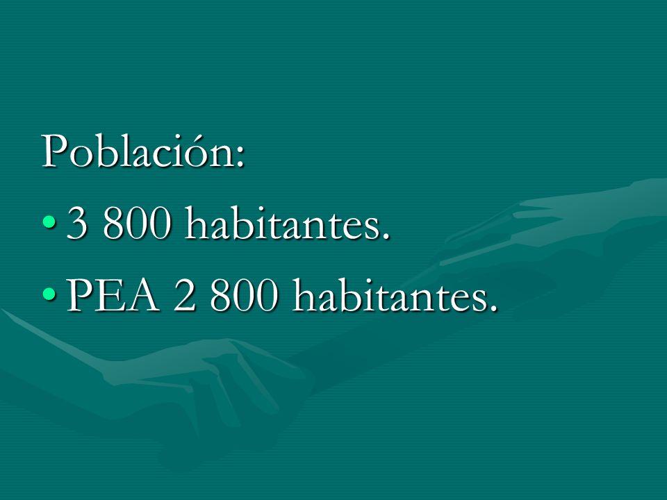Población: 3 800 habitantes.3 800 habitantes. PEA 2 800 habitantes.PEA 2 800 habitantes.
