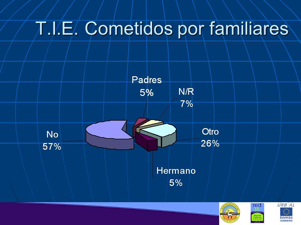 T.I.E. Cometidos por familiares