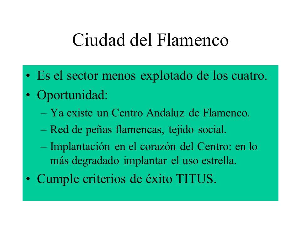 Ciudad del Flamenco Es el sector menos explotado de los cuatro. Oportunidad: –Ya existe un Centro Andaluz de Flamenco. –Red de peñas flamencas, tejido