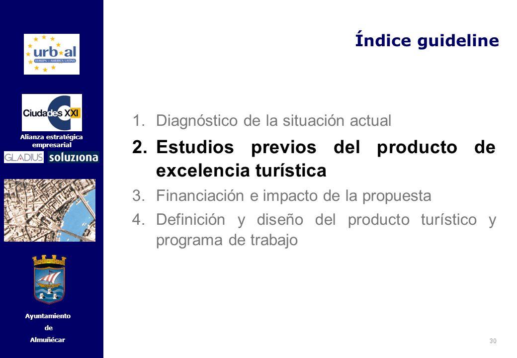 30 Alianza estratégica empresarial Ayuntamiento de Almuñécar Índice guideline 1.Diagnóstico de la situación actual 2.Estudios previos del producto de