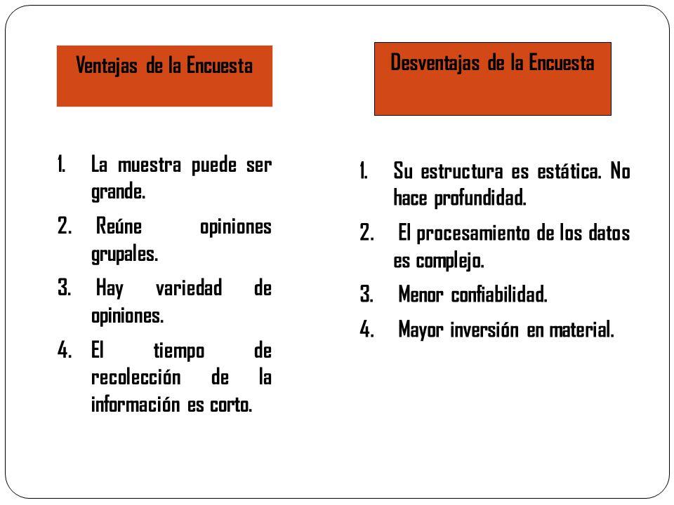 Ventajas de la Encuesta 1.La muestra puede ser grande. 2. Reúne opiniones grupales. 3. Hay variedad de opiniones. 4.El tiempo de recolección de la inf