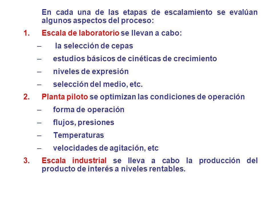 En cada una de las etapas de escalamiento se evalúan algunos aspectos del proceso: 1.Escala de laboratorio se llevan a cabo: – la selección de cepas –
