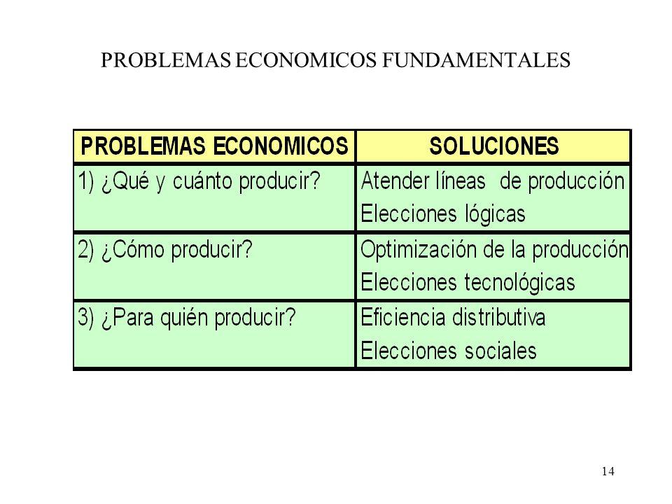 14 PROBLEMAS ECONOMICOS FUNDAMENTALES