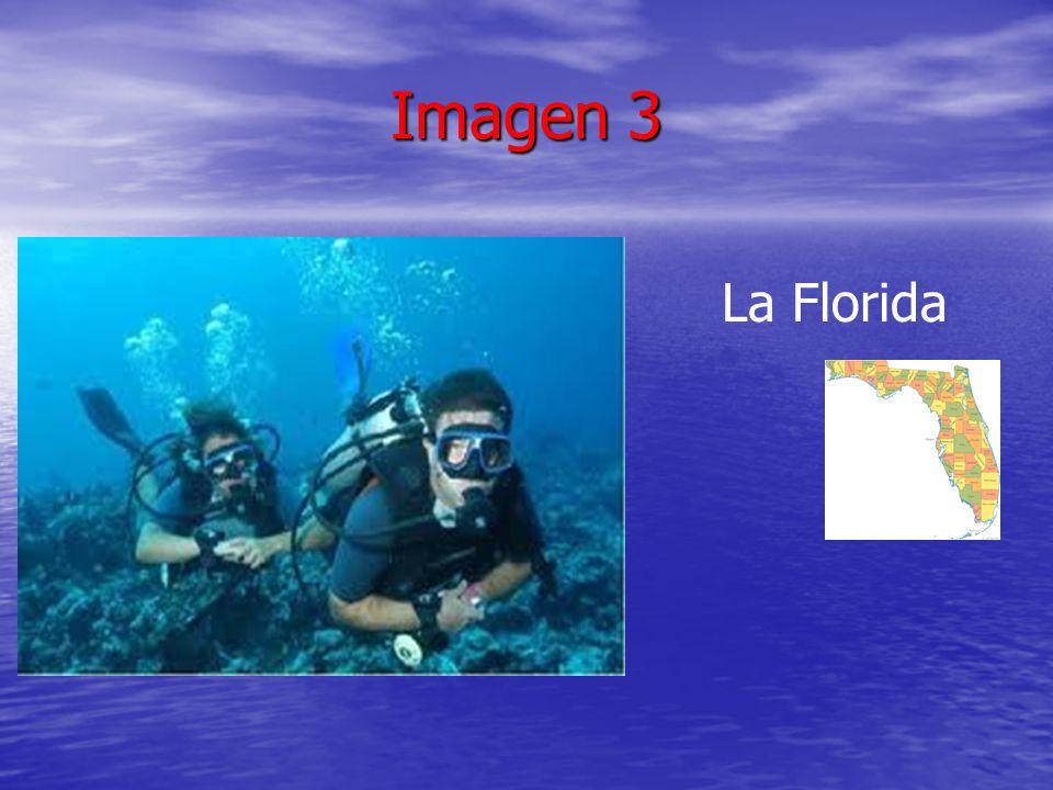 Imagen 3 La Florida