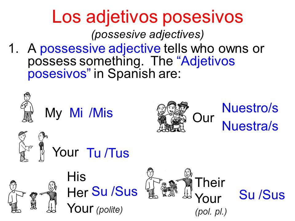 Por ejemplo: ______ primo ______ gorras ______ amigo ______ camisas Mi Mis Tu Tus