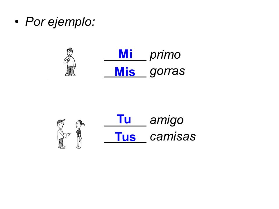 2.The possessive adjective MI, TU and SU have only two forms– Singular and Plural.