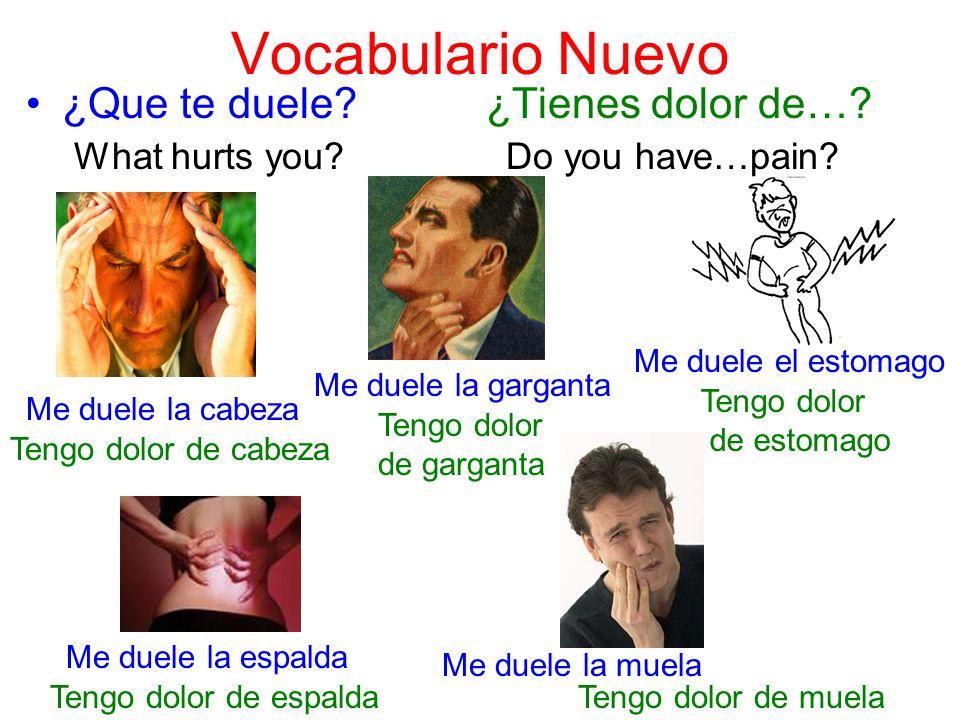 Vocabulario Nuevo ¿Que te duele? ¿Tienes dolor de…? What hurts you?Do you have…pain? Me duele la espalda Tengo dolor de cabeza Me duele la garganta Te