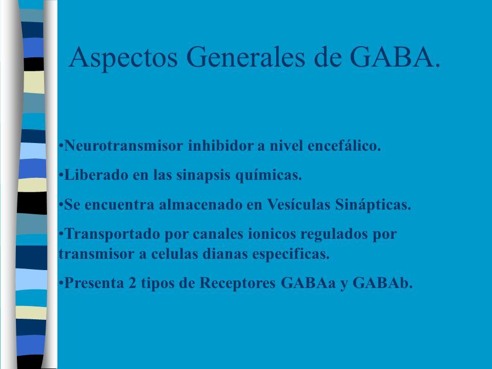 Aspectos Generales de GABA. Neurotransmisor inhibidor a nivel encefálico. Liberado en las sinapsis químicas. Se encuentra almacenado en Vesículas Siná