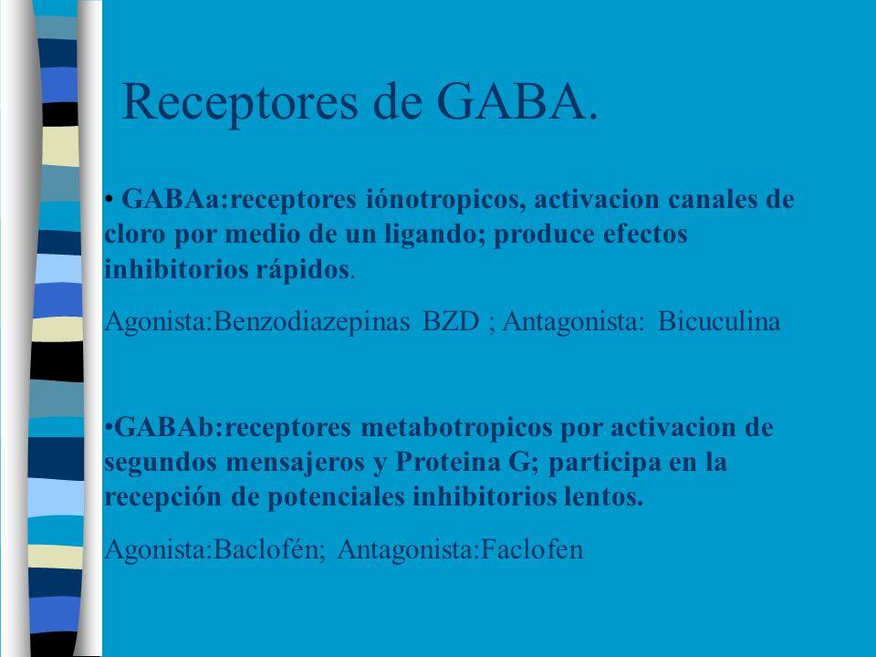 Receptores de GABA. GABAa:receptores iónotropicos, activacion canales de cloro por medio de un ligando; produce efectos inhibitorios rápidos. Agonista