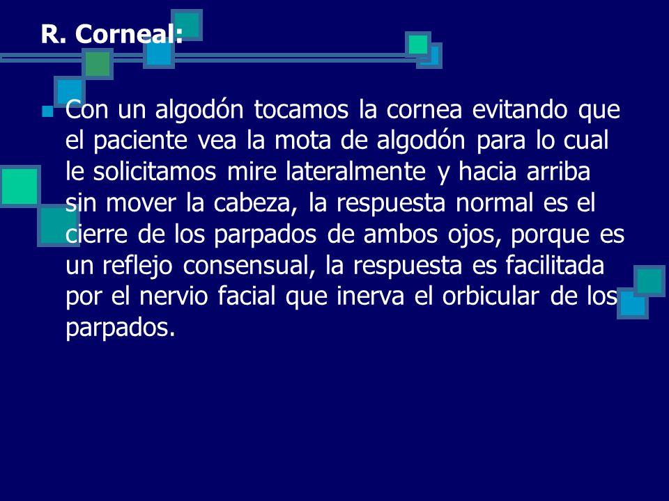 R. Corneal: Con un algodón tocamos la cornea evitando que el paciente vea la mota de algodón para lo cual le solicitamos mire lateralmente y hacia arr