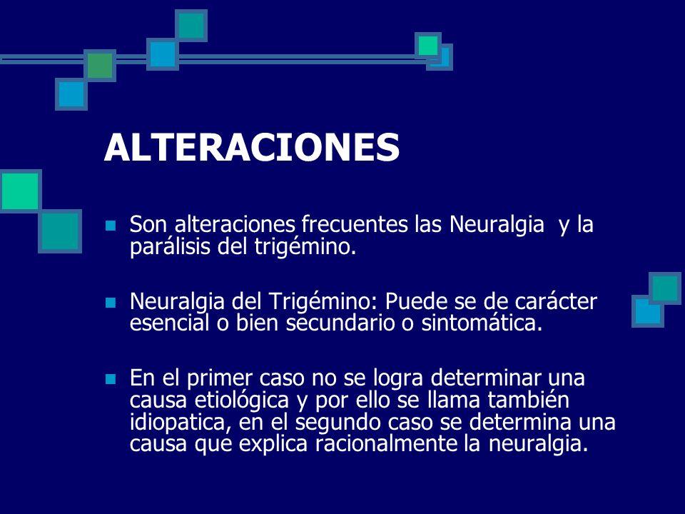 ALTERACIONES Son alteraciones frecuentes las Neuralgia y la parálisis del trigémino. Neuralgia del Trigémino: Puede se de carácter esencial o bien sec